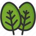herb, leaf, spinach icon