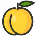 apricot, fruit, peach icon