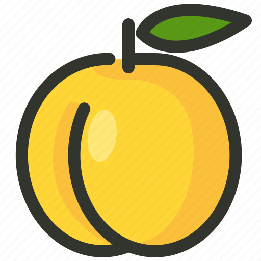 apricot, fruit, peach icon