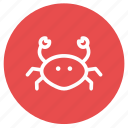 allergens, crab, crustaceans, food, ocean, prawn, shrimp icon