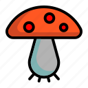 food, fungus, mushroom, toadstool, vegetable icon