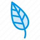 ecology, green, leaf, nature, tree icon