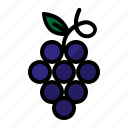 food, fruit, juice wine, wine icon