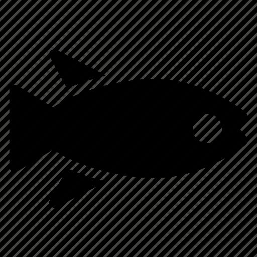 animal, aquarium, fish, fishing icon