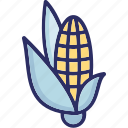corn, maize, pole corn, sugar corn, sweet corn icon