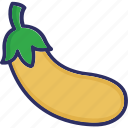 brinjal, eggplant, food, healthy diet icon