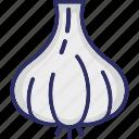 allium sativum, diet, food, garlic bulb, spice icon