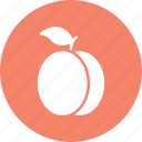 apricot, food, fruit, healthy food, peach icon