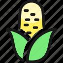 vegetables, corn