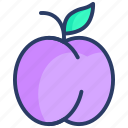 apricot, apricots, cooking, food, fruit, kitchen, restaurant icon