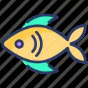 cook, fish, food, healthy, healthy food, sea, sea food