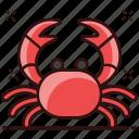 aquatic animal, bellyacher, crab, decapod crustaceans, marine animal, sea creature