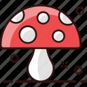 fungi, fungus, mushroom, oyster, oyster mushroom, toadstool icon