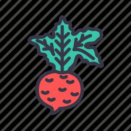 beet, food, healthy, kitchen, radish, root, vegetable icon