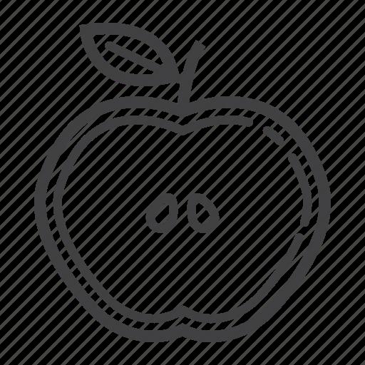 Apple, cut, diet, food, fruit, half, healthy icon - Download on Iconfinder