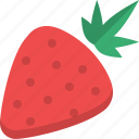 food, fruit, natural, organic, raw food, strawberry icon