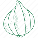 onion, vegetable icon