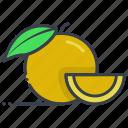 diet, food, fruit, healthy food, orange