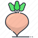 fodder radish, kohlrabi, turnip, vegetable, white turnip icon