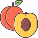 cooking, food, fruit, peach, shop, supermarket icon