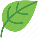 eco, ecology, greenery, leaf, leafage, nature icon