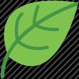 eco, ecology, greenery, leaf, leafage, nature icon