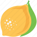 food, fruit, healthy food, lemon, lime, peach icon