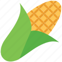 cob, corn, corncob, food, grain, maize, vegetable icon