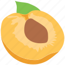 apricot, food, fruit, half peach, healthy diet, peach icon