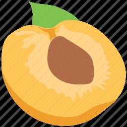 apricot, food, fruit, half peach, healthy diet, peach icon