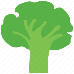 broccoli, healthy food, organic, raw food, vegetable icon