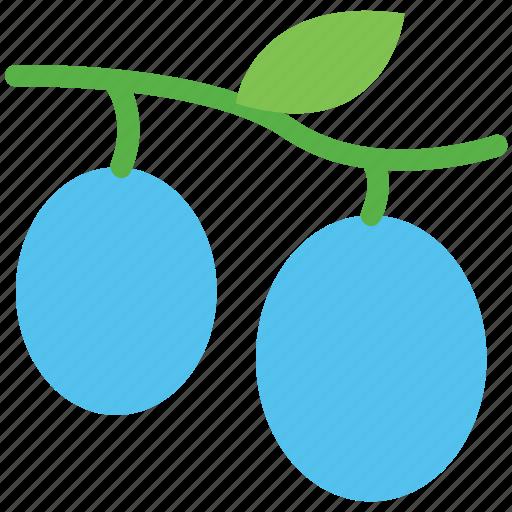 food, fruit, healthy food, leechee, lichee, lichii, litchi, lychee icon