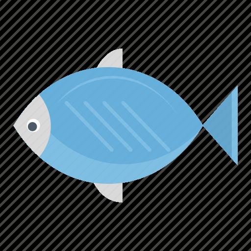 drinknatural, fish, food icon