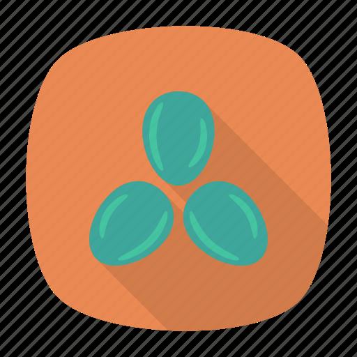 bean, pea, seed, vegetable icon