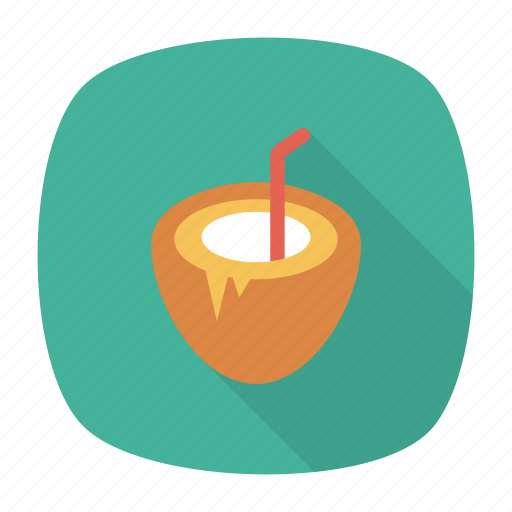 coconut, food, fruit, nature icon