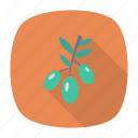 berry, food, fruit, nature icon