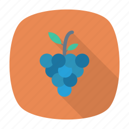 eat, fruit, grapes, healthy icon