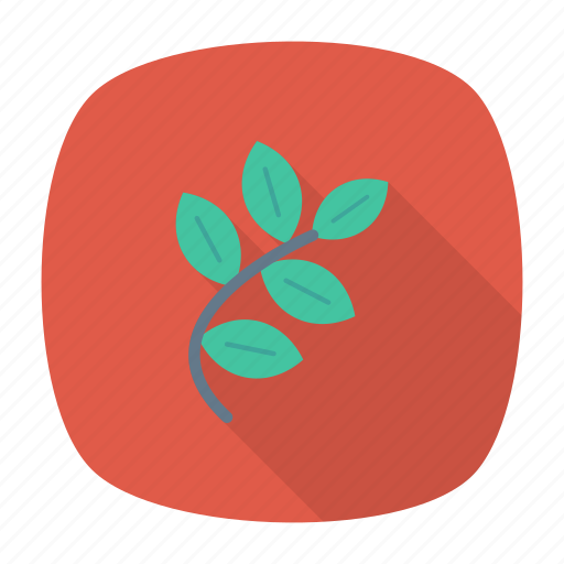 green, leaf, leave, nature icon