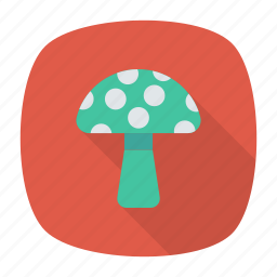 amanita, champignon, food, mushroom icon