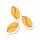 beans, coffee, plant, seed icon