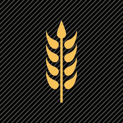 crop, grain, plant, wheat icon