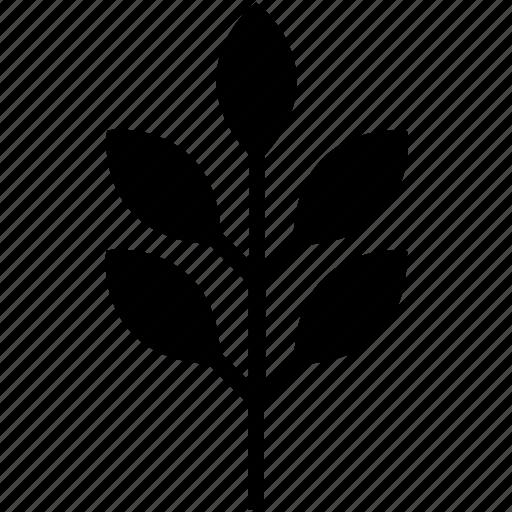 flora, food, glyph, leaf, nature icon