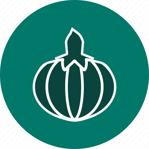 food, healthy, pumpkin, vegetable icon