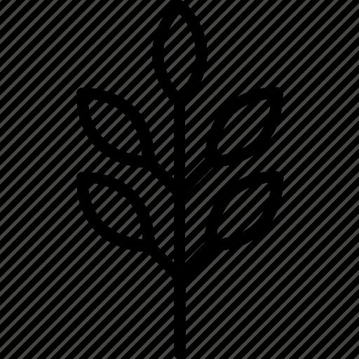 flora, food, leaf, line, nature icon
