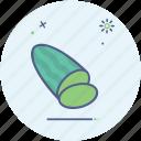 cucumber, food, fruit, salad, summer, vegetable icon