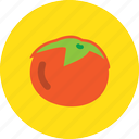 food, kitchen, red, tomato icon