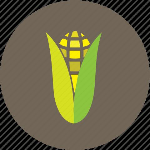 corn, farm, maize icon