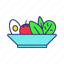 dinner, food, healthy, lunch, meal, salad, vegetable icon