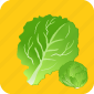 food, leaf, lettuce, organic, plant, restaurant, vegetable icon