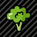 brocolli, eat, food, green, healthy, vegetable icon